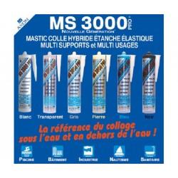 MS 3000 PRO
